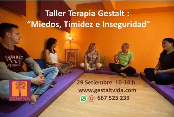 "Taller : ""Miedos, Timidez, Inseguridad"""
